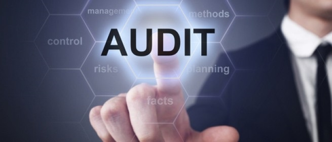 iran audit firms